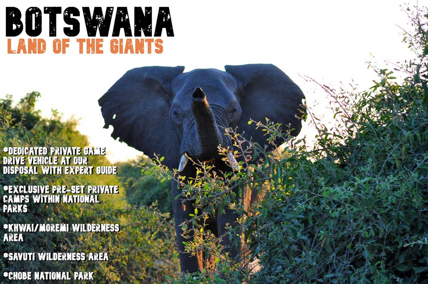 Botswana - Land of the Giants