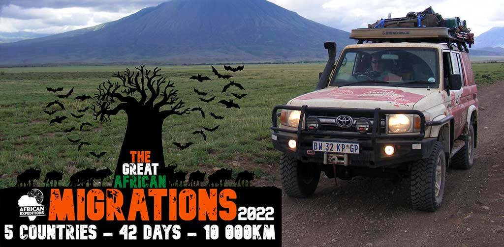 The Great African Migrations