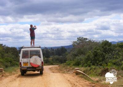 African Great Migration Guided Self-drive Safari